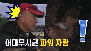 Download 왔.다. 내가 바로 붕-신이다! 덕화, 3짜 이상 성공! (feat.셀프 기억 삭제) |도시어부 59회 Video