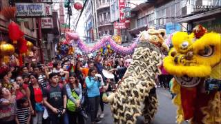 Download Chinese New Year 2017 Lion dragon Dance ongpin binondo manila Video