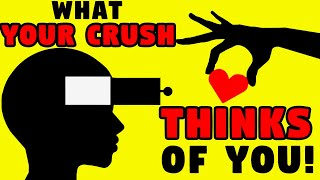 Download WHAT DOES YOUR CRUSH THINK OF YOU? Love Personality Test   Mister Test Video