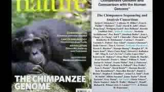 Download Primate Evolution and Human Disease Video