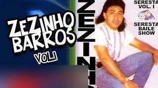 Download ZEZINHO BARROS VOL 1 - FILHO DO DONO Video