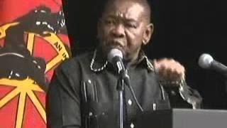 Download Cosatu Congress: Cde Blade's Speech Video