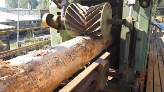 Download Amazing Automatic Wood Sawmill Machines Modern Technology - EXTREME Fast Wood Cutting Machine Video