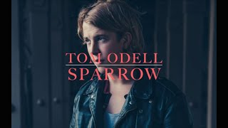 Download Tom Odell - Sparrow (lyrics) Video