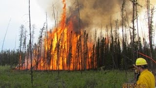 Download NASA Works with Forest Service to Improve Fire Shelters Video