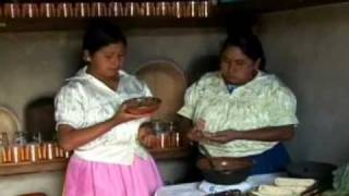 Download Traditional Mexican cuisine - ancestral, ongoing community culture, the Michoacán paradigm Video