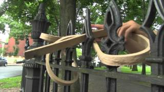 Download Wood Bending WITHOUT STEAM? Video