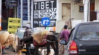 Download Le Tibet intérieur - Documentaire sur l'exil tibétain Video