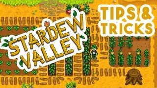 Download Stardew Valley \\ Tutorial \\ Beginner Tips & Tricks Guide Video