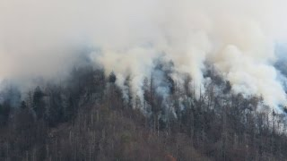 Download Tennessee wildfires 'likely to be human-caused' Video