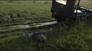 Download Safari Live : Tayla not having a good morning in the Maasai Mara ( Funny ) Dec 10, 2017 Video