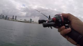 Download How To Cast A Baitcaster Video
