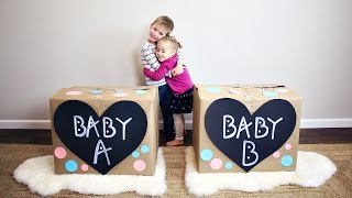Download Twins Gender Reveal!! Video