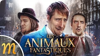 Download LES ANIMAUX BORDÉLIQUES DE NORBERT ! Video