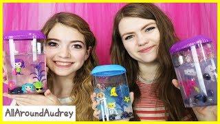 Download Jelli Slime Aquarium - Blindfolded Tiny Hands Challenge / AllAroundAudrey Video