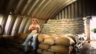 Download Documental Café de Costa Rica. Los rostros, los paisajes, la historia - 2014 Video