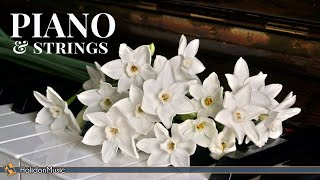 Download Classical Music - Piano, Violin & Strings Video