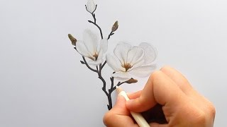 Download Timelapse   Drawing a white Magnolia with colored pencils   Emmy Kalia Video