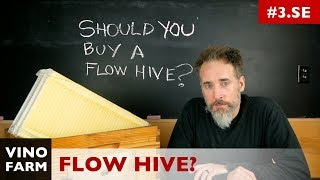 Download FLOW HIVE - Why I haven't used it. Video