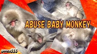 Download Rage baby monkey Video