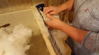 Download Preparing Alpaca Fiber for Spinning - Without Spending a Ton of Money Video