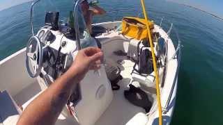 Download sortie bateau avec marc rubio, guide de peche Video