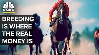 Download The Kentucky Derby winners and stud fees | CNBC Video