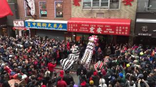 Download Lion Dance NYC Chinatown Chinese New Year 2017 @ Fong Inn Too Part 1 Video