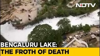 Download Residents 'Trapped' As Bengaluru Lakes Froth Like Never Before Video