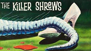 Download The Killer Shrews (1959) SCI-FI HORROR Video
