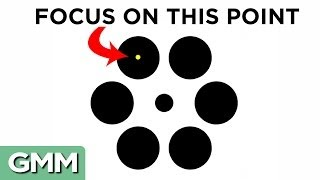 Download 10 Best Optical Illusions of 2014 Video