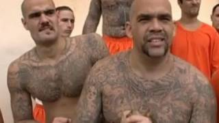 Download Racial segregation in San Quentin prison - Louis Theroux - Behind Bars - BBC Video