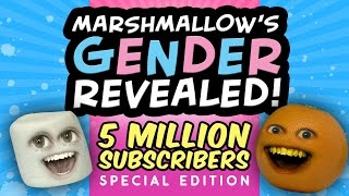 Download Annoying Orange - Marshmallow's Gender Revealed!!! (5 MILLION Subscriber Special) Video