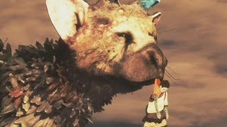 Download THE LAST GUARDIAN ENDING & Post Credits Ending Video