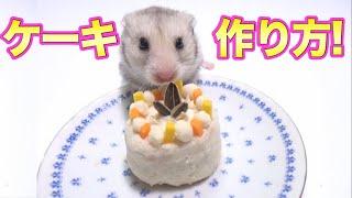 Download ハムスター専用ケーキ!!!作り方! Video