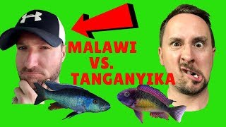 Download MALAWI Cichlids VS. TANGANYIKA Cichlids which is better? Video