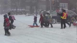 Download Toronto, Ontario Winter Snow Storm - Canada, eh ? Video