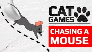 Download CAT GAMES - CHASING A MOUSE (ENTERTAINMENT VIDEOS FOR CATS TO WATCH) 60FPS Video