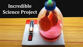 How to make Human Heart Model | Part 1/2 Free Download Video