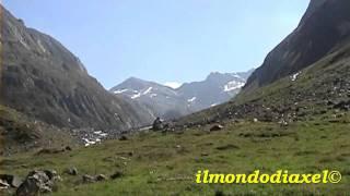 Download Da Casere/Kasern in Valle Aurina verso il Rifugio Gioco Lungo Video
