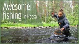 Download HOSSA National Park – Fish in Finland Video