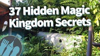 Download 37 Hidden Secrets in Disney World's Magic Kingdom! Video