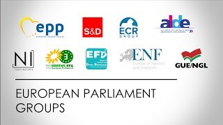 Download The Political Groups in the European Parliament - European election 2019 | Europe Elects Video