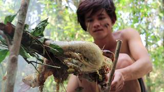 Download Hunting Duck Using Primitive Spear and then Roasted Duck For Dinner Video