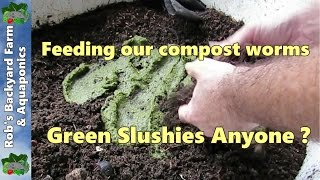 Download How we feed our compost worms, worm slushies anyone ? Video