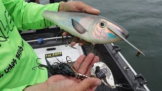Download Fishing Giant Baits For BIG Fish!! Unforgettable Day Video