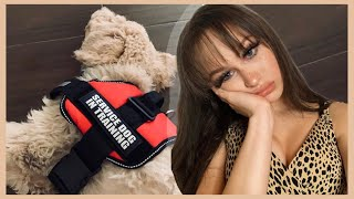 Download Haley Morales LIES about her Service Dog?! Video