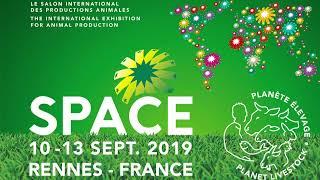Download Space 2019 - Concours bovins du mercredi 11 septembre 2019 Video