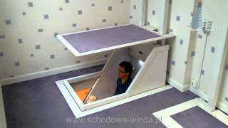 Download Home lift VM Video