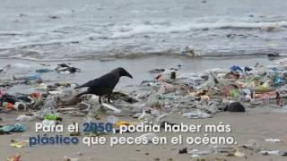 Download Guerra al plástico Video